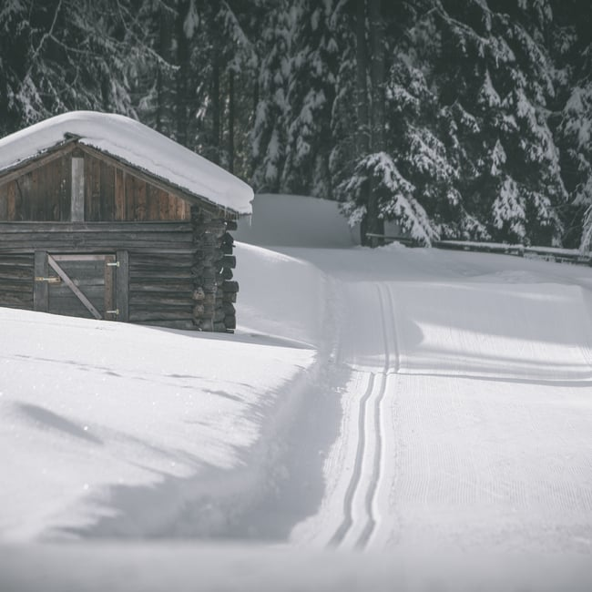 Paradiso sci di fondo Antherselva